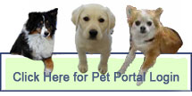 Companion Animal Hospital - Pet Portal Login.
